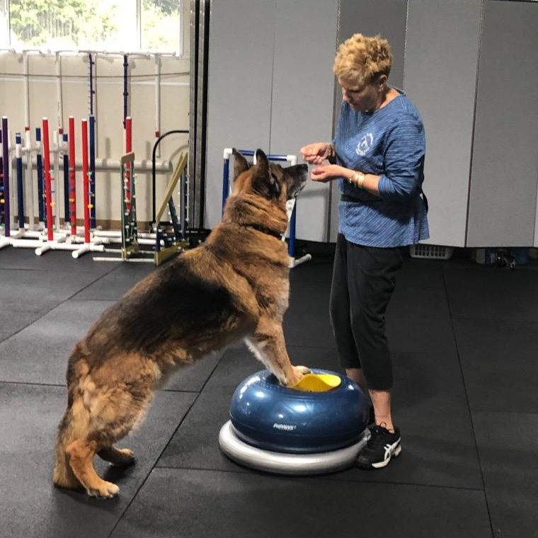 Confidence and K9 Core Class