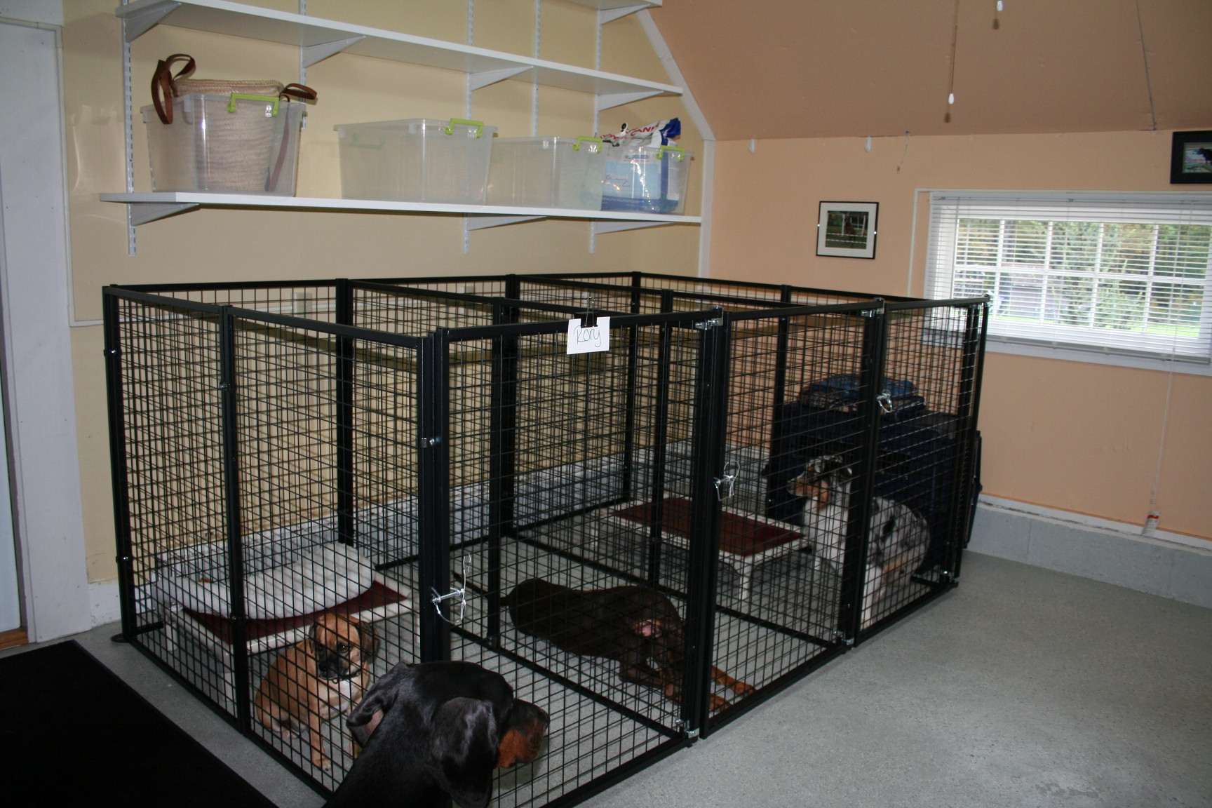 Awesome Ideas Of Dog Kennel In Garage Best Home Design